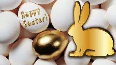 paashaas en het gouden ei